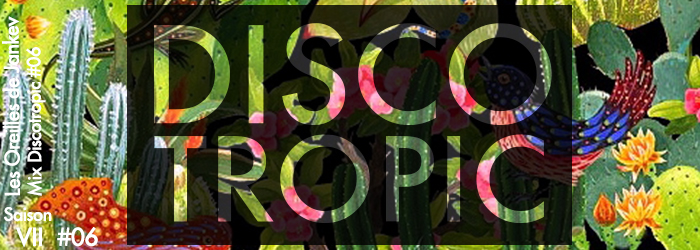 banner-discotropic6