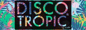 banner discotropic SUmmer