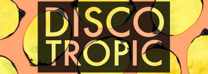 banner discotropic 07